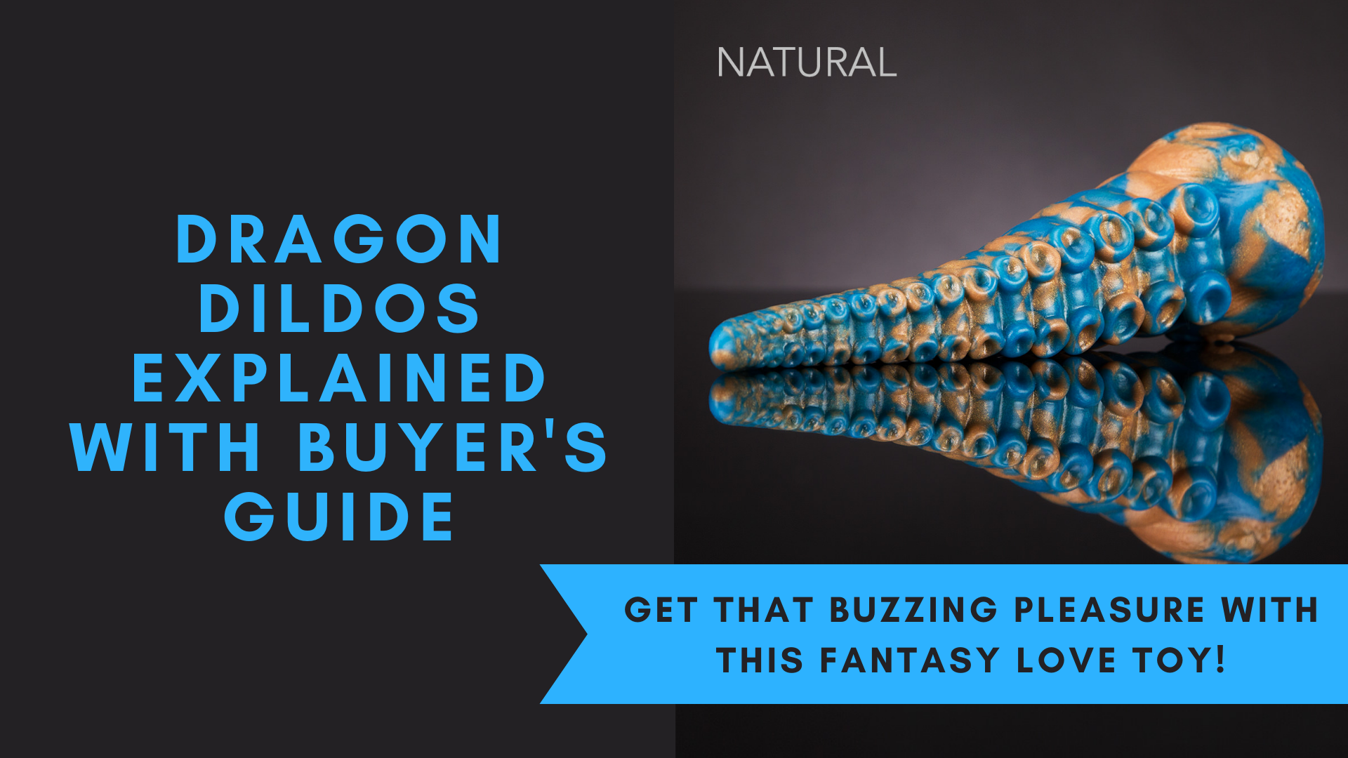 Dragon Dildos Explained With Buyer's Guide